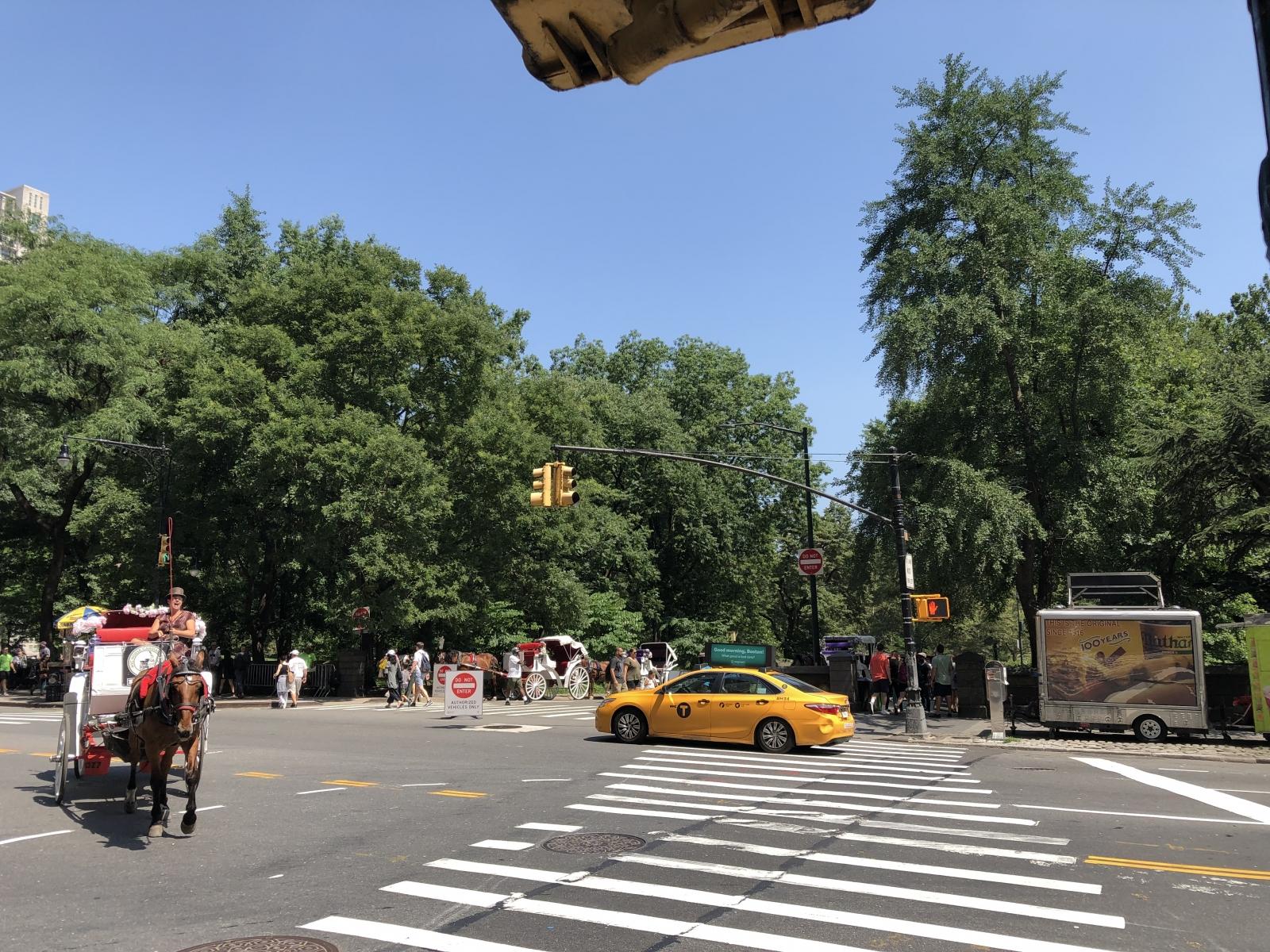 Vor dem Central Park